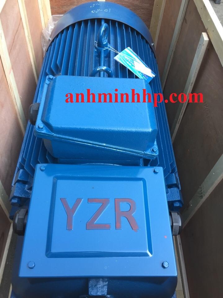 Động cơ  cầu trục 3 pha YZR, ZR.